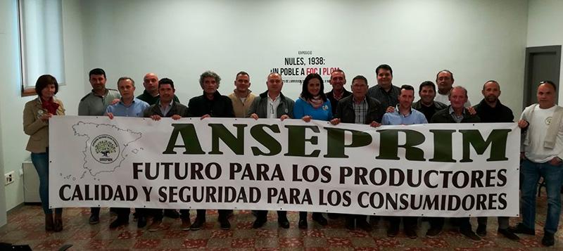 I Congreso Nacional de Anseprim.