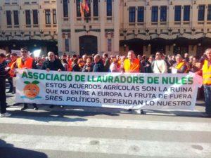 Manifestación en Valencia en defensa de la citricultura española. Naranjas.