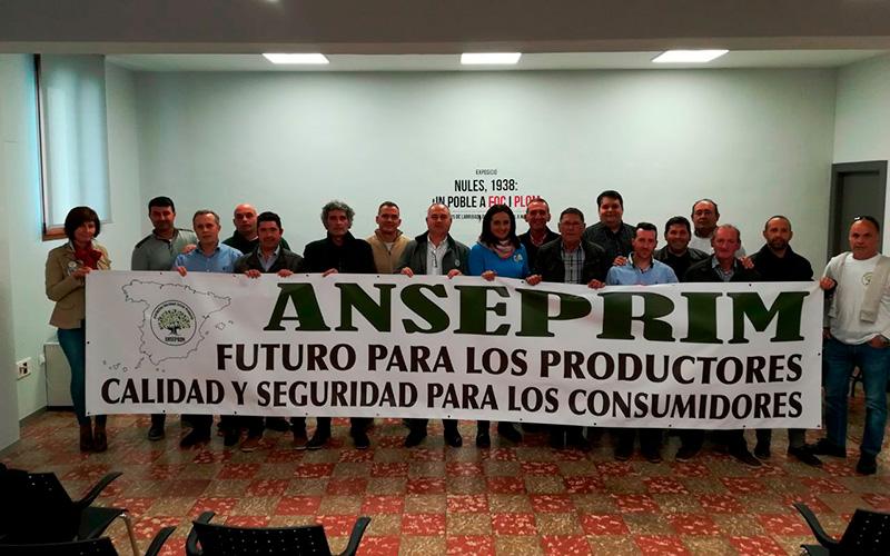 Anseprim celebra en Castellón su primer Congreso Nacional