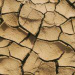 El agua abrirá los debates en Infoagro