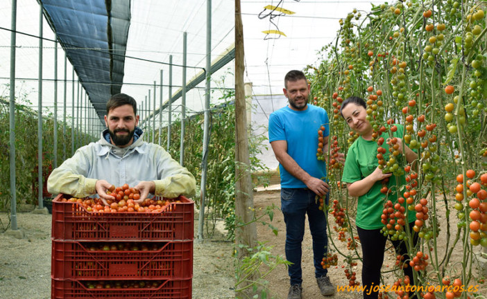 El trinomio Karelya: agricultor, comercializador y supermercado
