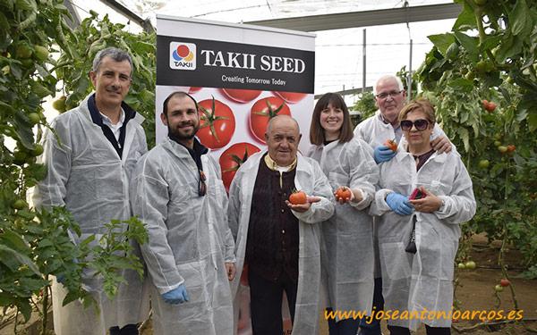 Tomate Vayana, nuevo tomate larga vida en dos jornadas de campo celebradas en Almería - joseantonioarcos.es