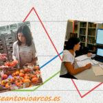 Se crea el primer modelo que predice precios agrícolas