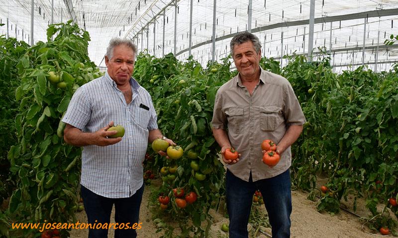 Antonio el Rey, gerente de Sandirey; con el agricultor Juan Berenguel. /joseantoniarcos.es