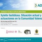 Día 9 de mayo. Jornada sobre Xylella y situación actual. Valencia