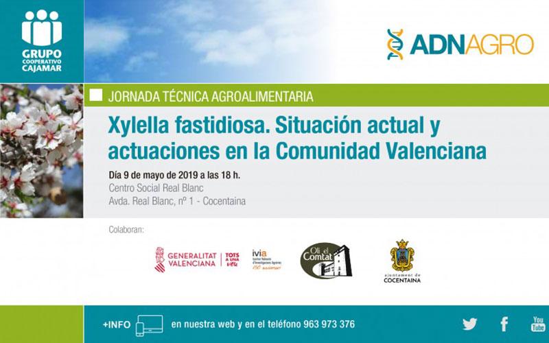 Xylella fastidiosa - joseantonioarcos.es