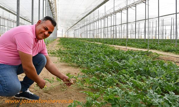 Nueva formulación específica para producciones ecológicas que permite un ahorro de hasta el 50% en un recurso tan crítico para la agricultura como el agua - joseantonioarcos.es