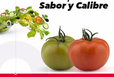 Día 15 de mayo. Jornada de tomate de HM Clause