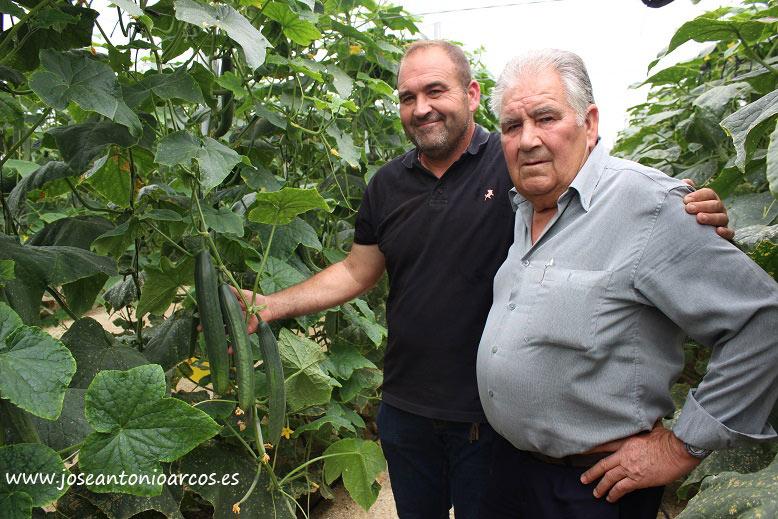 Agricultores almerienses de pepino. Modelo familiar agrícola. /joseantonioarcos.es