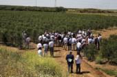 Kimitec Group completa la adquisición de Greenfield