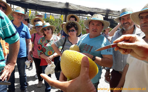 Jornada de melón galia de Takii Seed -joseantonioarcos.es