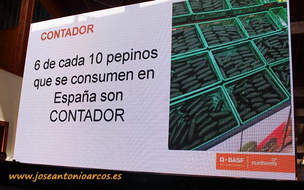 Pepino Contador. Nunhems. /joseantonioarcos.es