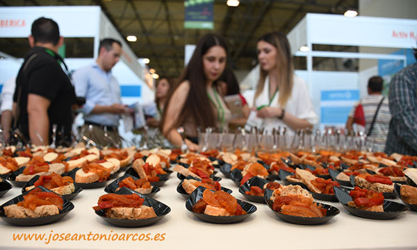 Pimiento Sweet Palermo en InfoAgro Exhibition 2019. /joseantonioarcos.es