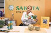 Los hermanos Torres acompañan a Sakata en Almería