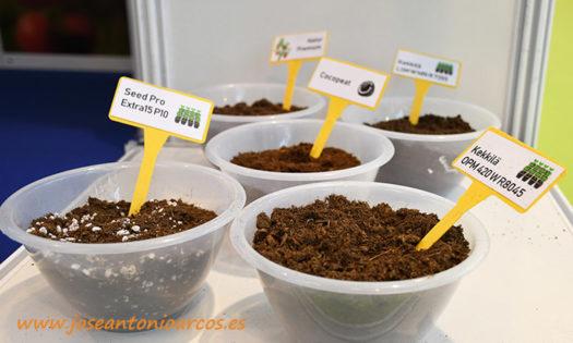 Projar quiere destacar sus sustratos para semilleros- joseantonioarcos.es