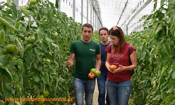 José David Ávila explicando algunas características de tomate Corredor. /joseantonioarcos.es