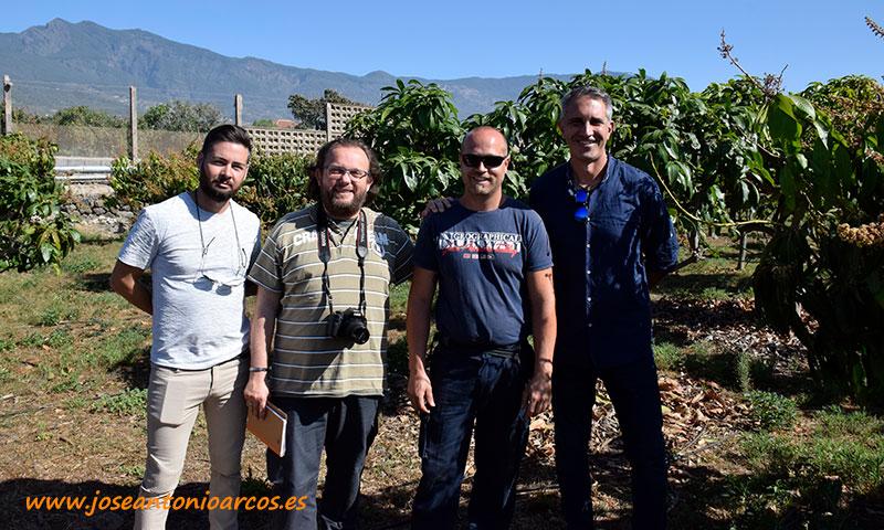 Entre mangos con Efrén Díaz, Kiko González y José Antonio Tabares. /joseantonioarcos.es