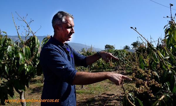 José Antonio Tabares, responsable de Compo Expert en las Islas Canarias. /joseantonioarcos.es