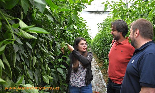 Profesores de EFA Campomar con alumnos en invernaderos de Almería. /joseantonioarcos.es