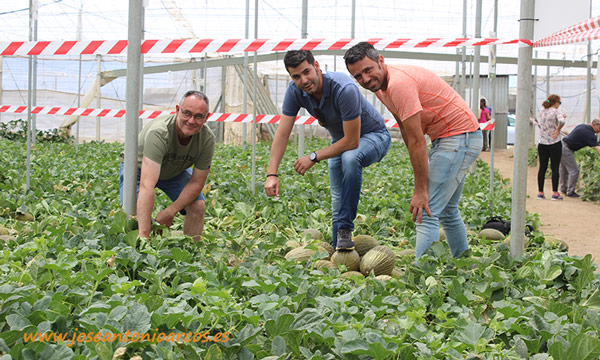 Jornada de campo de melón de Ramiro Arnedo en invernaderos de Almería. /joseantonioarcos.es