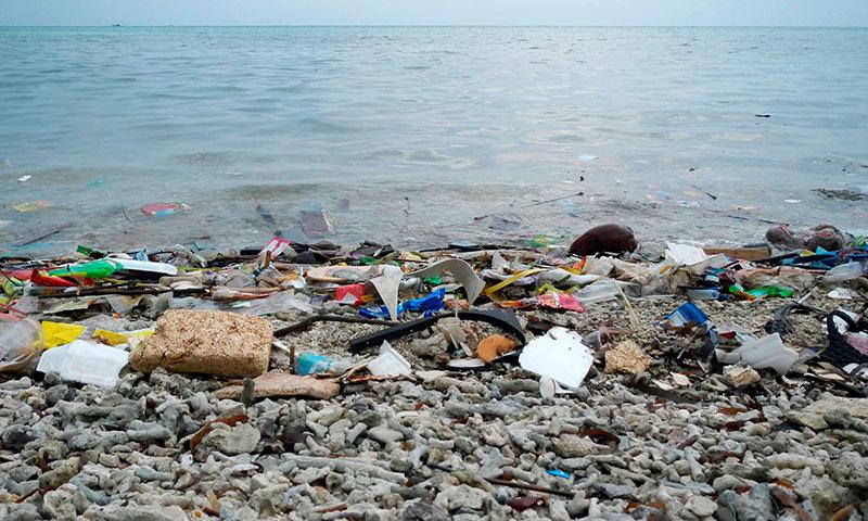Opciones para evitar el uso del plástico en el día a día - joseantonioarcos.es