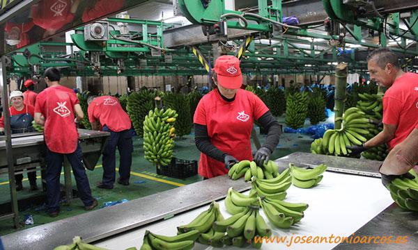 Cooperativa FAST, Tenerife, Canarias. /joseantonioarcos.es
