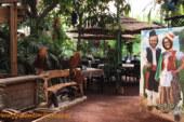 Comer y conocer en Tenerife