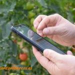 Cómo saltar la barrera al uso de la tecnología en el agro