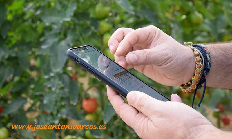 Fases de las Empresas Agro en la Analítica de Datos - joseantonioarcos.es