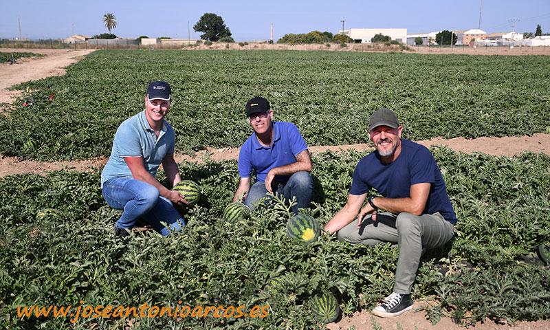 Daan Vernooij, Federico Puyó y Aniceto Giménez con la variedad de sandía Margay. /joseantonioarcos.es