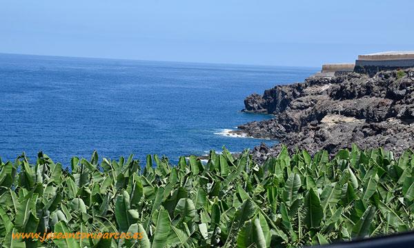 Isla de Tenerife. Al sur. Plataneras sobre acantilados. /joseantonioarcos.es