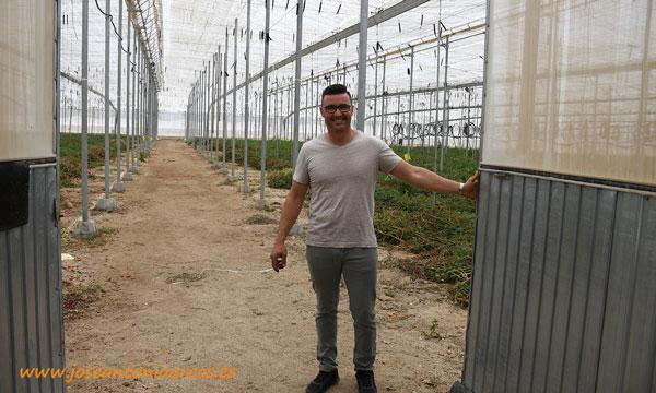 Uno de los invernaderos de tomate en los que se realiza el abonado en verde. Campojoyma. /joseantonioarcos.es