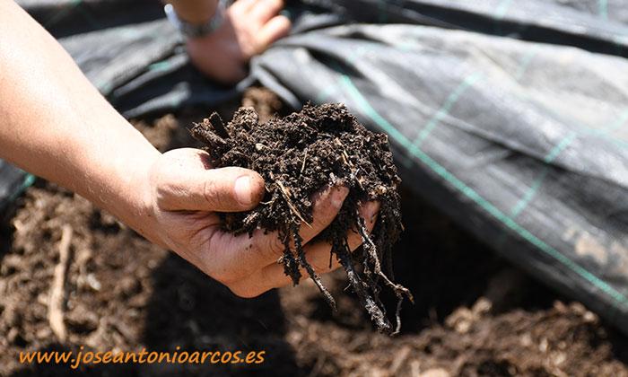 Compost de Campojoyma. /joseantonioarcos.es