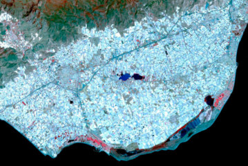 Actualización efecto albedo del invernadero de Almería