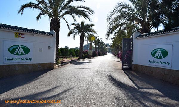 Centro de Experiencias de Museros en Valencia de la Fundación Anecoop. /joseantonioarcos.es