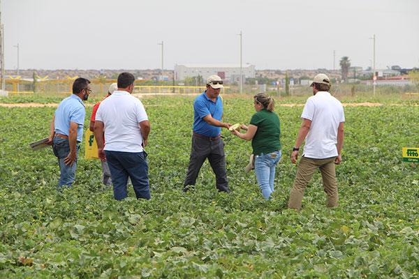 Jornadas de melón y sandía de Semillas Fitó -joseantonioarcos.es