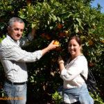 Variedades alternativas a la citricultura actual
