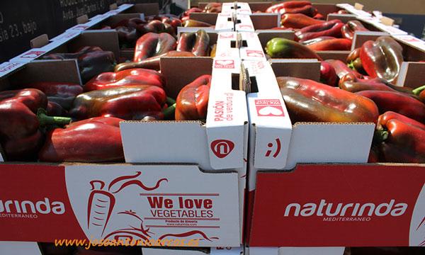 Envases de cartón de Naturinda. /joseantonioarcos.es
