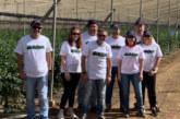 Ecoculture prepara al cultivo ante olas de calor