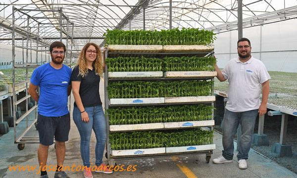 Residuo Cero. Semillero Cristalplant. /joseantonioarcos.es