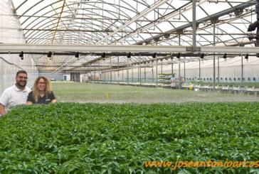 Cristalplant implementa en el semillero el Residuo Cero