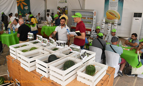 Global Event Melon & Watermelon. The total solution'. Rijk Zwaan. /joseantonioarcos.es
