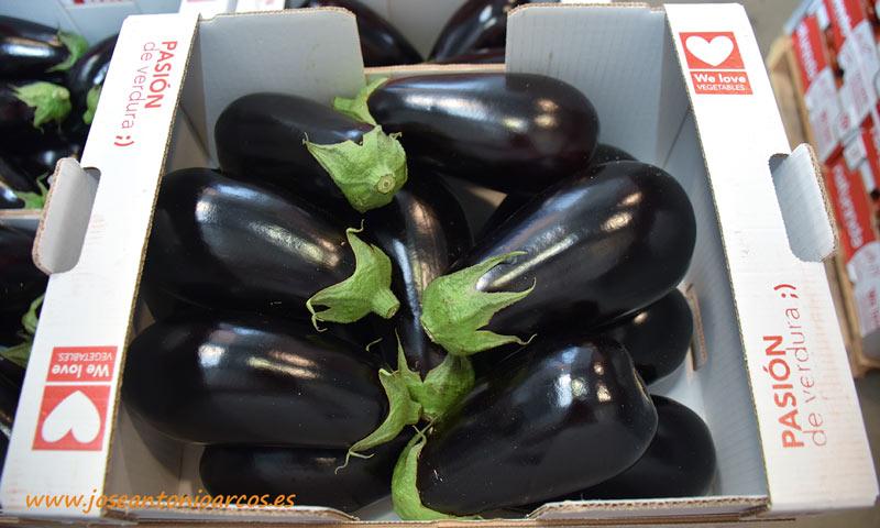 Berenjenas negras ovaladas. /joseantonioarcos.es
