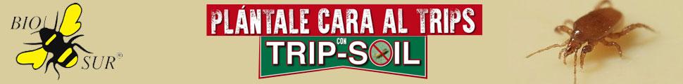 CABECERA BIOSUR TRIP-SOIL