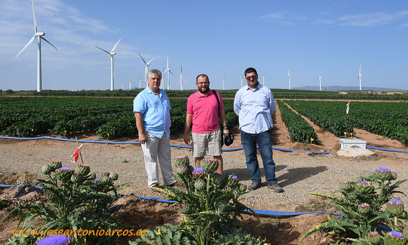 Con Julián Arnedo y Paco García. Calahorra, La Rioja, Ramiro Arnedo. /joseantonioarcos.es