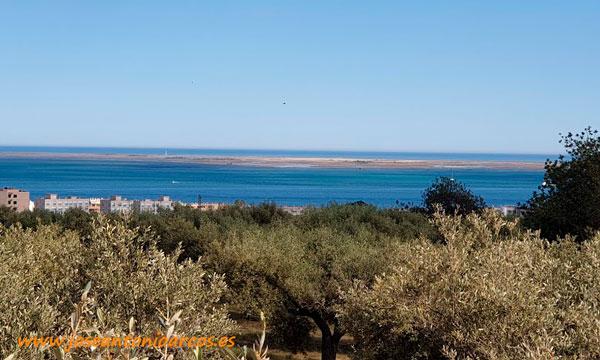 El Delta del Ebro. /joseantonioarcos.es