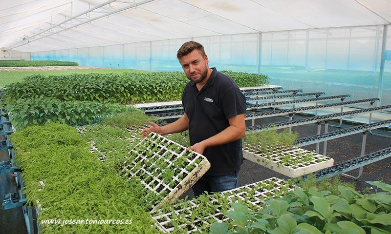 Javier Castillo con una de las bandejas del kit de plantas reservorio del semillero Cristalplant. /joseantonioarcos.es
