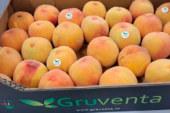 La fruta de verano sufre la competencia de terceros países