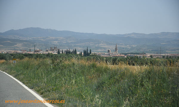 Campos de Olite, Navarra. /joseantonioarcos.