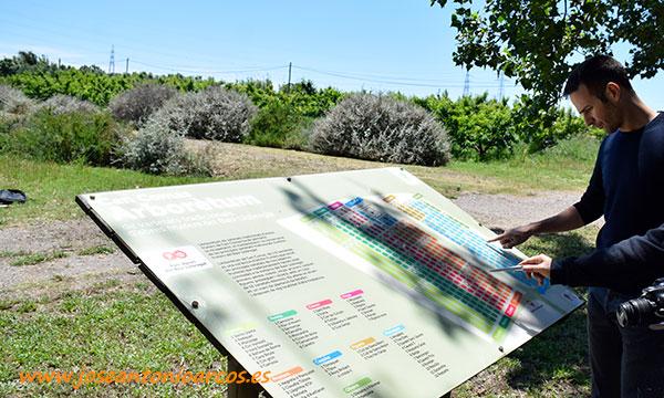 Arboretum. Parc Agrari del Baix Llobregat. /joseantonioarcos.es